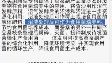 本实用新型专利蚕桑副产品蚕沙发酵废弃物在食用菌培养中的应�m降低食用菌生产成�c专利技�c,食用菌shiyongjun