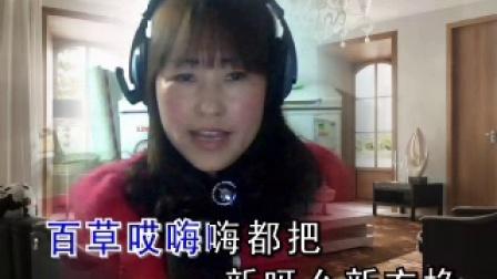 二人台【卖碗】演唱;珍珍