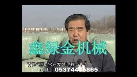 黄贮青贮微贮饲草养牛养羊技术视频