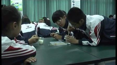 教科版小學科學五年級下冊《馬鈴薯的水中的沉浮》教學觀摩視頻