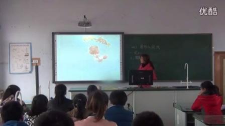 人教版九年级数学上册《图形的旋转》吉林省,2014学年度部级优课评选入围优质课教学视频