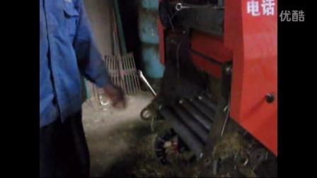 黄牛养殖技术玉米秸秆加工面包草青贮养黄牛视频
