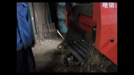 面包草养黄牛养殖技术玉米秸秆青贮养黄牛秸秆青贮机视频