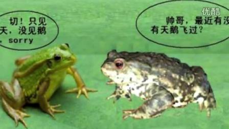 青蛙和癞蛤蟆有什么区别