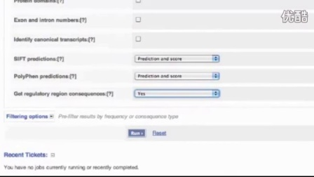 Analyse your Sequence Variants with the VEP Web Interface