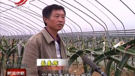 返乡创业者聂春辉的梦想 新闻夜航 160412