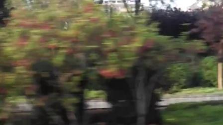 泗阳客运站,自拍,史海伦QQ1398738555