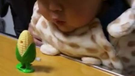 孩子 这个玉米不能吃!(小兰兰的小奇奇)
