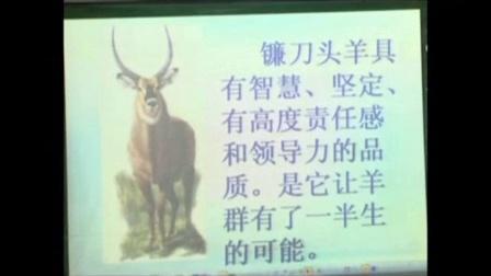 人教版七年级语文下册《斑羚飞渡》教学视频3,四川省初中语文优质课评选