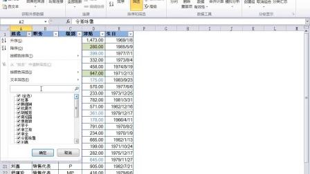 Excel 2010实战技巧精粹-Excel 2010灵活筛选数据