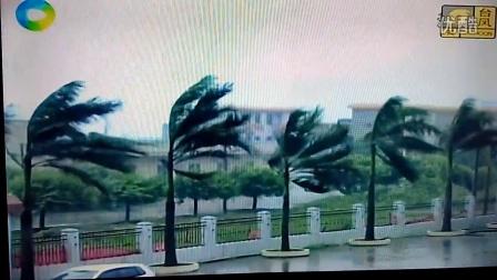 """今年第4号台风""""妮妲""""路线(2日)在广东省"""