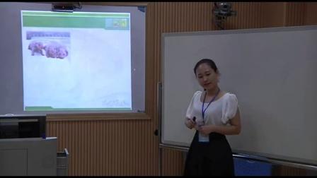 2015年广西全区师范生教师技能大赛(中学生物说课及模拟教学)