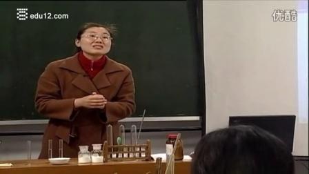 初中化学新课标、新课程导学课例视频