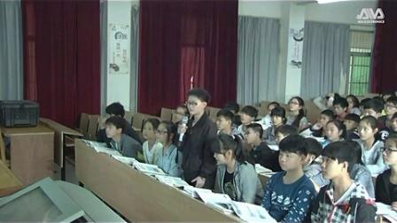 初中历史人教版七下《中外的交往与冲突》湖南刘少芳