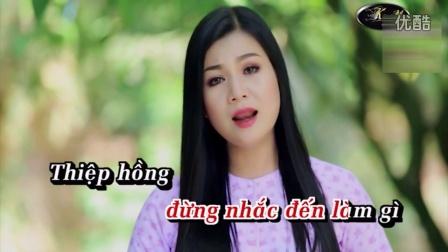 越南歌曲:我的人生心事Tâm Sự Đời Tôi (Karaoke)演唱 : 杨红鸾Dương Hồng Loan