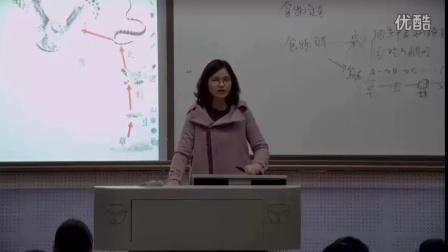初中生物人教版七上《生态系统第二课时》湖南茹慧香