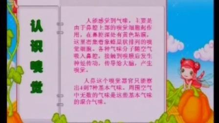 小学美术 一年级下册 苏少版 画味觉 画嗅觉 江苏省优质教学资源课堂教