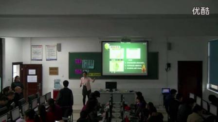 47特等奖 梅玉珊《数据的图形化表示-图表》教学视频,第四届全国初中信息技术优质课展评视频
