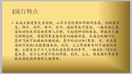 闫韩:羊红眼病的治疗技巧视频