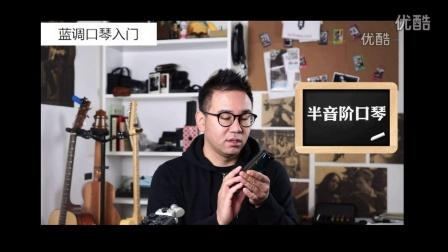 幻化成风口琴_通宝口琴官网