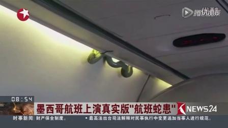 """吓坏!墨西哥航班上演真实版""""航班蛇患""""   di相关的图片"""