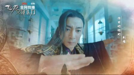 《飞刀又见飞刀》片头曲 12.5优酷全网独