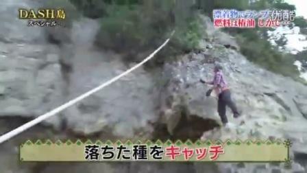 ダッシュ_ダッシュ島椿油
