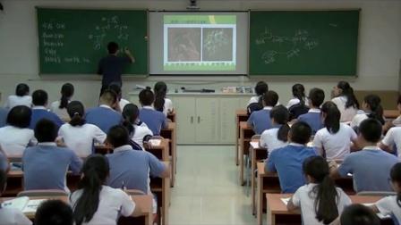 《从生物圈到细胞(第2课时)》教学课例(人教版高一生物,平冈中学:郭明阳)