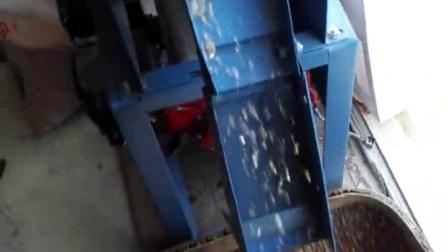 玉米脱皮机衡水神龙  QQ914794760 膨化机配件  配套机器