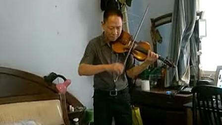 高档独板小提琴视频幼儿园科学图片