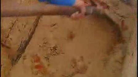 二元母猪养殖技术视频视频-在线收看李玉梅视频图片