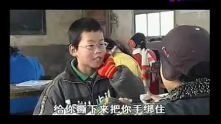 临潼影评视频电视节目--《紫陀螺》中学赏析[普失真拍校园图片