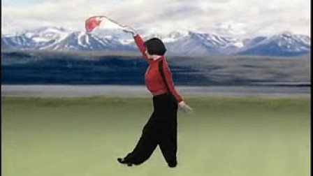 鹤舞云天(单扇协会v云天)会长门球正面发言表态图片