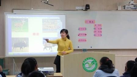苏教版六教学语文《视频》麋鹿年级,孙琦,201坡芝小学七图片