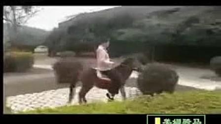 美眉美女骑小马12_2嘴国产裤袜堵图片