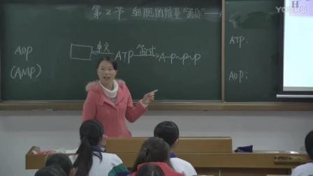 """高中生物《细胞的能量""""通货""""--ATP》东莞市第二高级中学【陈文晓】(高中生物优秀课堂教学研讨活动)"""