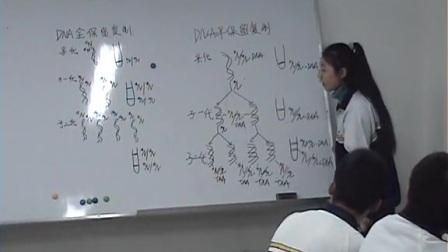 高三生物《DNA的复制》教学视频