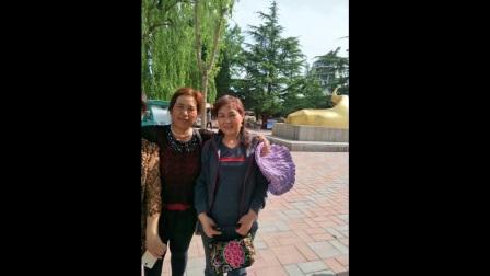 淄博市高青一日游