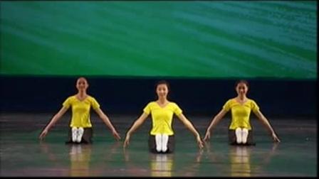 《膝盖脚趾头》中国舞蹈家协会少儿舞考级二级 (勾绷脚练习)