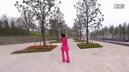 26沭河之光广场舞 山谷里的思念 背面