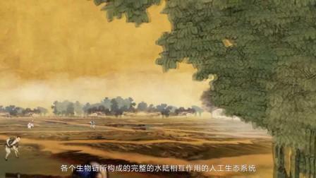 湖州桑基鱼塘.720P 宣传片