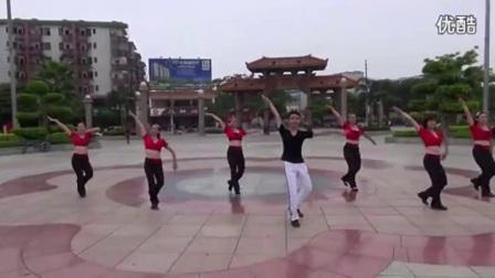 广场舞系列 广场舞大全 16步《姑娘想嫁人》广场舞.flv