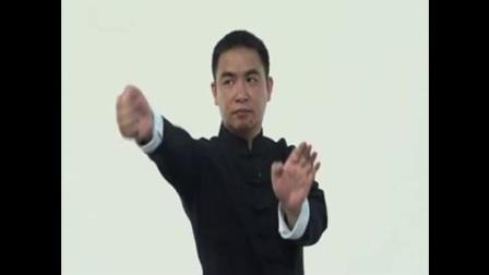 叶问咏春拳基础入门  珍藏教程