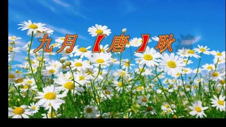 祝重阳节朋友们快乐    音乐  拉丁名曲  深情的吻
