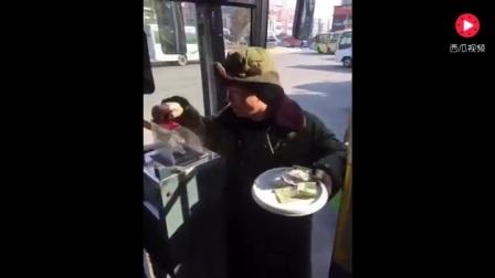 二货美女坐公交,笑翻一车人,太搞笑了!