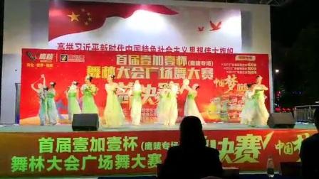 2017年双11:中山市港口镇《梦之韵舞蹈队》首届壹
