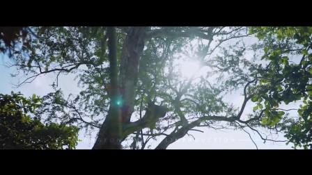 MOD影像-巴厘岛婚纱旅拍mv  测版