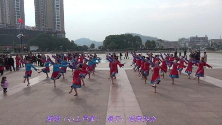 舞蹈(心上芦家) 展示:排舞协会
