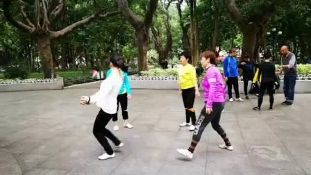 广州大战视频踢南派花毽公园狮狗人民图片