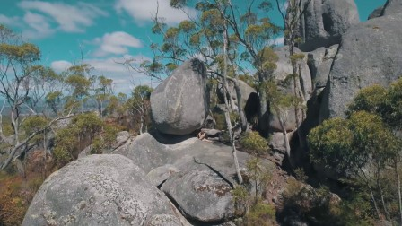 SPHJ-414-澳大利亚悉尼自然风景动物延时摄影